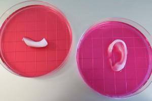 Что умеет медицинская 3D-печать