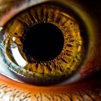 На 3D-принтере напечатали роговицу глаза