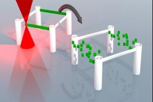 Химики создали «стираемые чернила» для 3D-печати